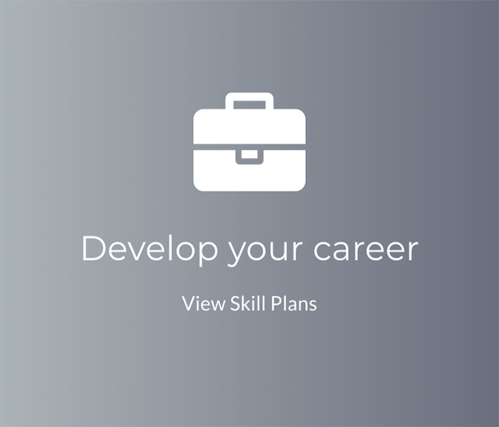Developer Your Career at HIVE-X
